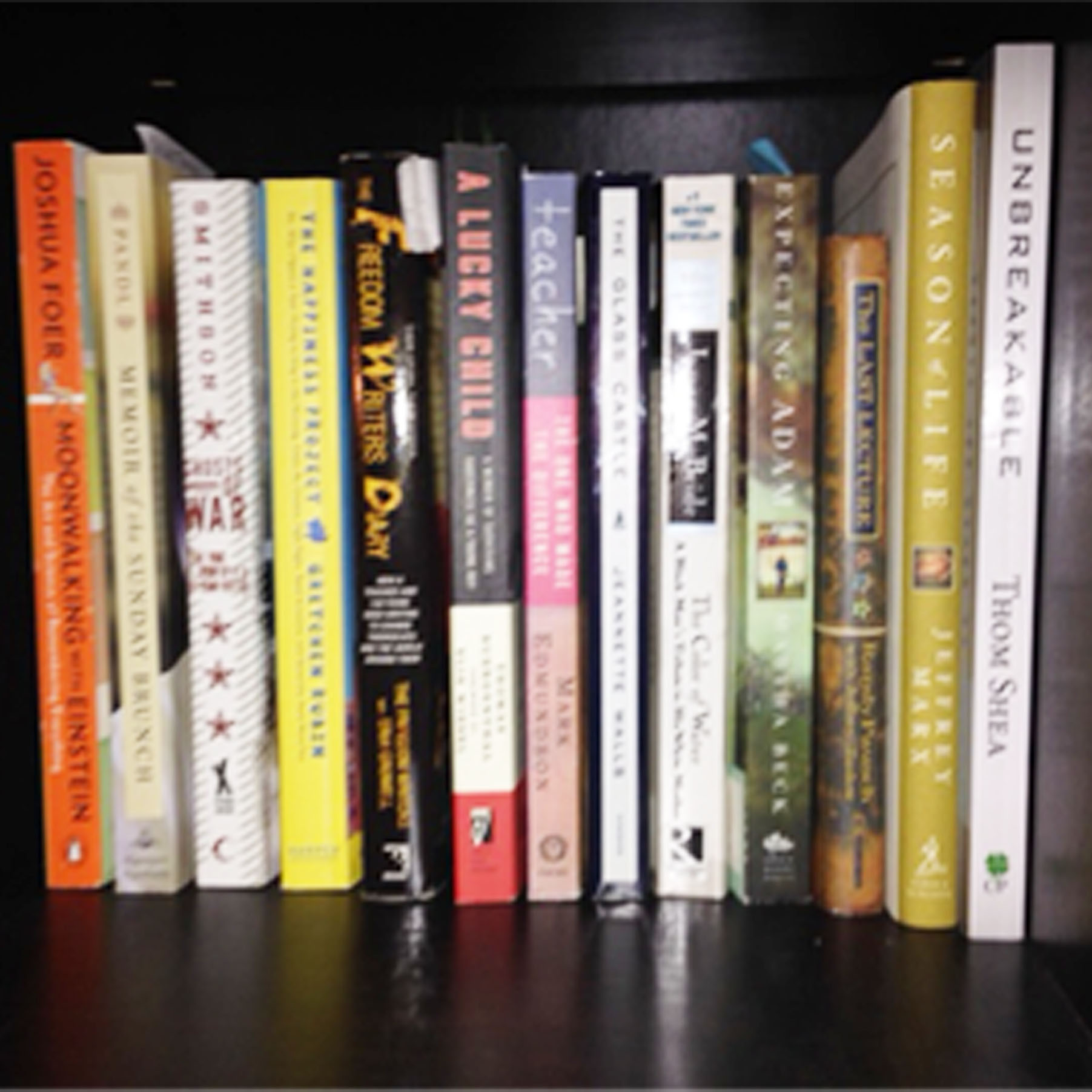 A photo of A set of books on a bookshelf representing Sunday Dinner Stories's LIfe Story Library.
